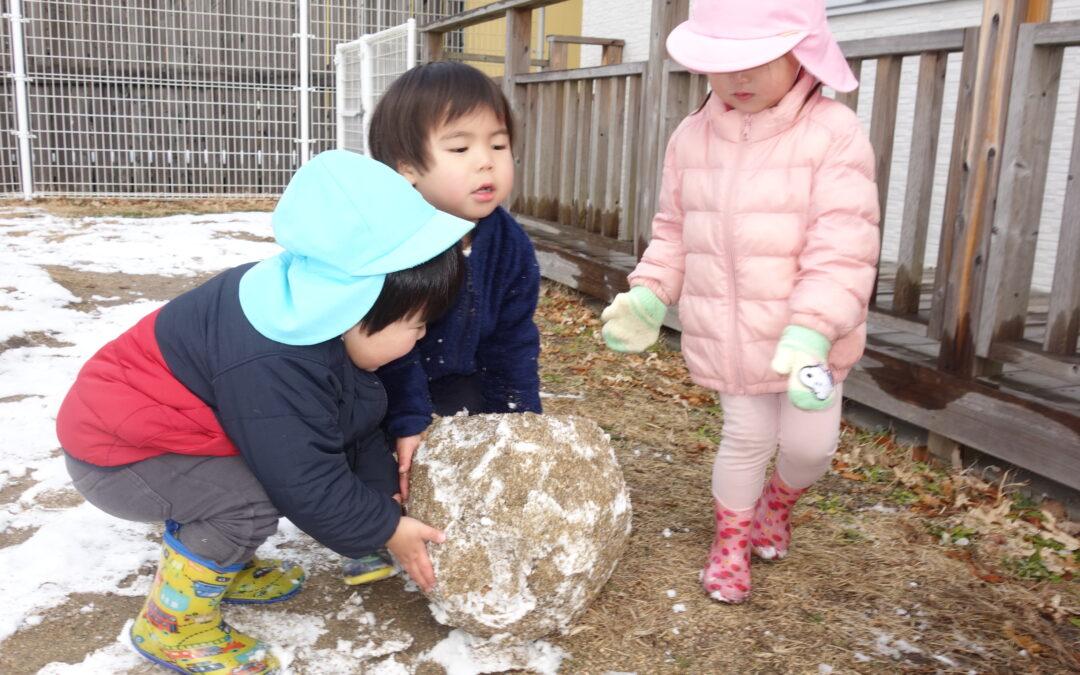 (山口)早朝からの雪を暫し満喫する